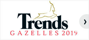 Trends Gazelles 2019